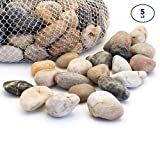 Royal Imports 5lb Large Decorative Ornamental River Pebbles Rocks for Fresh Water Fish Animal Plant Aquariums, Landscaping, Home Decor etc. with Netted Bag, Natural