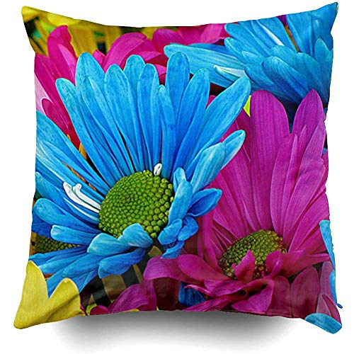 (Colorful Hot Pink Teal Blue Gerber Daisies Flowers Cushions Case Throw Pillow Cover for Sofa Home Decorative Pillowslip Gift Ideas Household Pillowcase Zippered Pillow Covers 18X18)