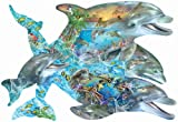SUNSOUT INC Song of The Dolphin 1000 pc Jigsaw Puzzle