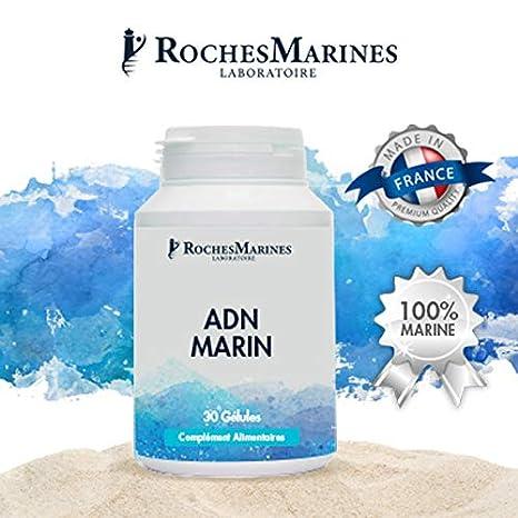 ADN Marino 30 gélules - Lecha de pescado salvaje - Memoria y concentración - fabricado en Francia: Amazon.es: Salud y cuidado personal