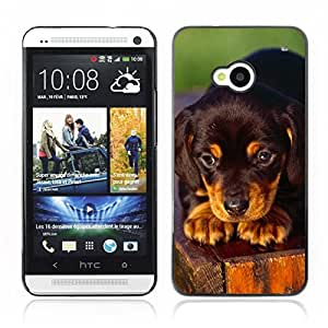 Hot Style Cell Phone PC Hard Case Cover // V0000852 Dog Puppy Pattern // HTC ONE M7