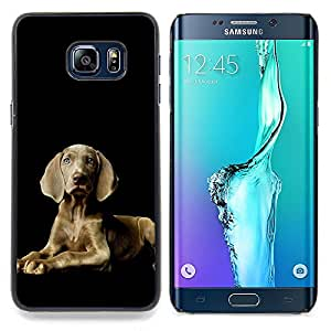 Ihec Tech Weimaraner orgulloso Gris Blue Dog Eyes / Funda Case back Cover guard / for Samsung Galaxy S6 Edge Plus / S6 Edge+ G928