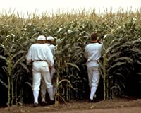 Field of Dreams classic image of baseball players disappear into crops 8x10 Promotional Photograph