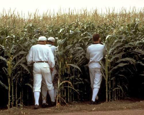 (Field of Dreams classic image of baseball players disappear into crops 16x20 Poster)