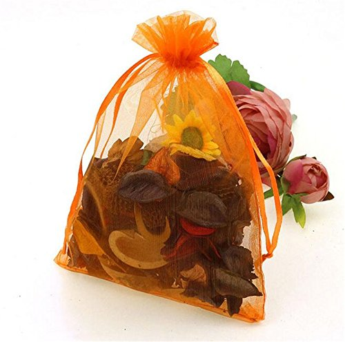 Organza Wedding Party Favor Bags- Package of 100 (4″x6″, Orange)