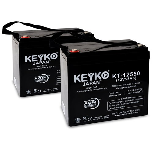 Everest & Jennings 3V 12V 55Ah Group 22NF SLA Sealed Lead Acid AGM Rechargeable Replacement Battery Genuine KEYKO ® - IT Internal Tread Terminal - 2 Pack by KEYKO