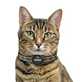 Pawscout Smarter Pet Tag (New Version 2.0) - Cat