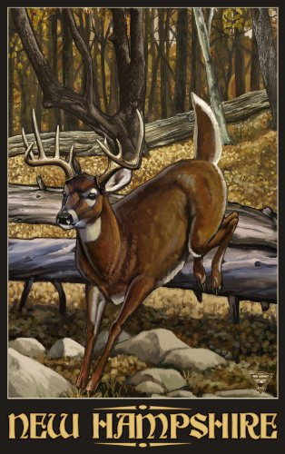 Northwest Art Mall New Hampshire Whitetail Deer Wall Artwork by Paul A. Lindquist, 11 by - Mall Hampshire New In