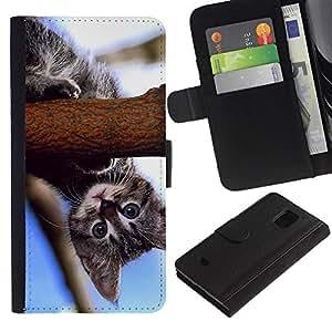 """Be-Star la tarjeta de Cr¨¦dito Slots PU Funda de cuero Monedero caso cubierta de piel Para Samsung Galaxy S5 Mini (Not S5), SM-G800 ( Curioso gatito beb¨¦ Gato Azul Naturaleza"""" )"""