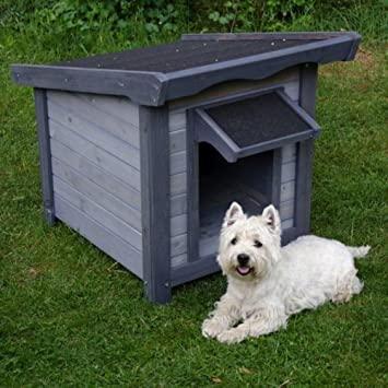 Cucce Per Cani Moderne.Cuccia Per Cani Moderna E Facile Da Montare Per Dare Al Tuo