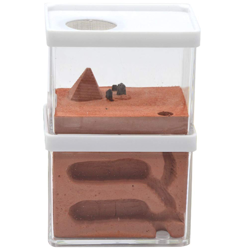 PLAFUETO Double Layer Pyramid Design Ant Farm Box Ant Home for Kids Study of Ant Behavior Educational Formicarium for Ant