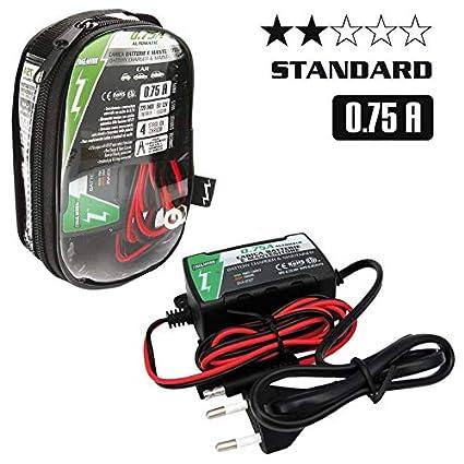 ZIM&MANN Cargador batería + Man 6 V/V 0.75 A: Amazon.es ...