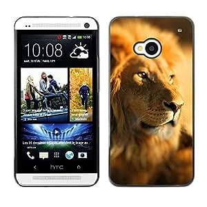 TECHCASE**Cubierta de la caja de protección la piel dura para el ** HTC One M7 ** Lion Africa Savannah Jungle Leader Pack