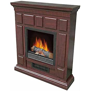Amazon.com: Portable Electric Heater Indoor Fireplace with 32 ...