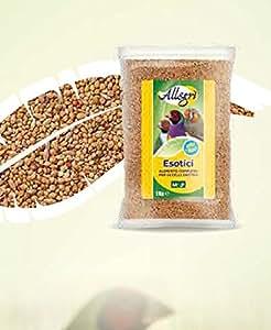 Mezcla de semillas para pájaros exóticos, 1 kg