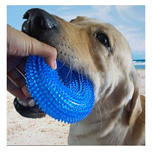 AMYPZN Squeaky Pet Chew Toy TPR Dog Molar Rings with Massage Beads Soft Bite Resistant Dumbbell for Teeth Cleaning, Playing
