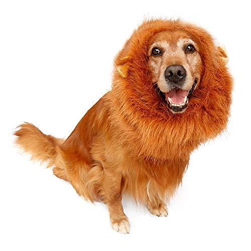 Albabara Dog Lion Mane Realistic & Funny Costume with Ears for Dogs - Complementary Lion Mane for Medium to Large Sized Dogs Perfect for Halloween Party