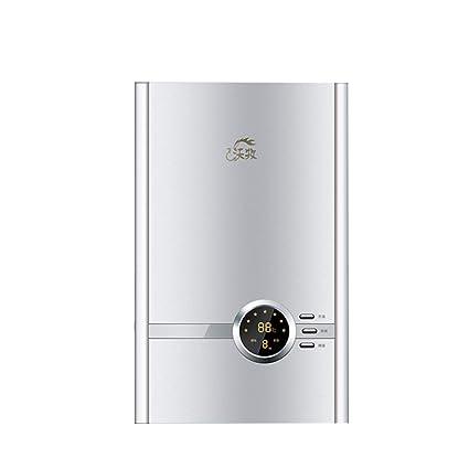 Calentador de Agua instantáneo - Calentador de Agua eléctrico casero de la Ducha rápida de la
