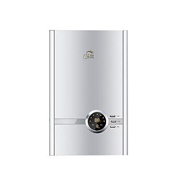 Calentador de Agua instantáneo - Calentador de Agua eléctrico casero de la Ducha rápida de la Ducha 365 * 230 * 80m m: Amazon.es