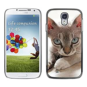 All Phone Most Case / Hard PC Metal piece Shell Slim Cover Protective Case for Samsung Galaxy S4 I9500 Devon Rex Donskoy Sphynx Minskin