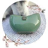 Desktop Business Card Holder | Ceramic Indoor Planter, Handmade Porcelain Container, Countertop Office Restaurant Home Decor (Bluish Green)
