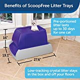 PetSafe ScoopFree Top-Entry Ultra Self-Cleaning Cat
