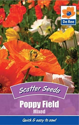 2 Packs of Poppy Field Mixed Flower Garden Scatter Seeds