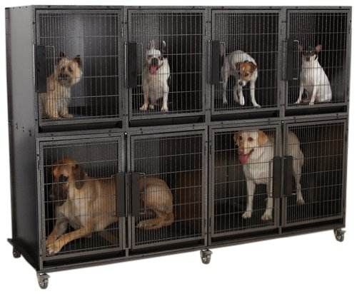 Pro Select Modular Kennel Cage Bank Kit, - Unit Cage Bank