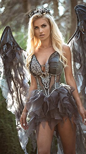 InCharacter Costumes Women's Dark Angel's Desire Costume, Grey/Silver, Large]()