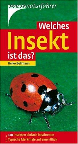 Welches Insekt ist das?