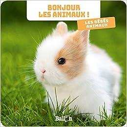 Bonjour Les Animaux Les Bébés Animaux 9789403206875