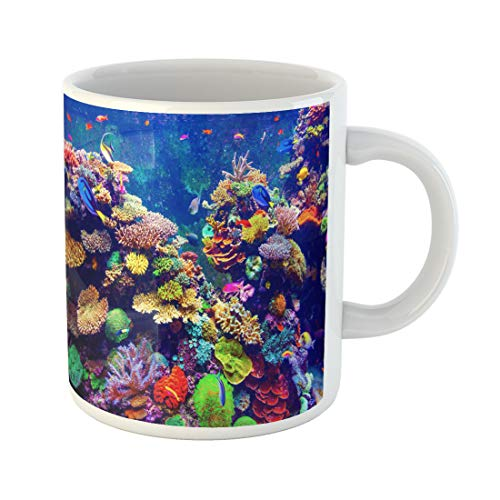 Semtomn Funny Coffee Mug Blue Coral Reef and Tropical Fish in Sunlight Singapore 11 Oz Ceramic Coffee Mugs Tea Cup Best Gift Or Souvenir -