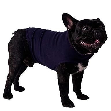 Mascotas Perros Accesorios Ropa, Zolimx Abrigo de Ajustado y Duradero Suave para Perros Cachorros Mascotas Pacificas: Amazon.es: Ropa y accesorios