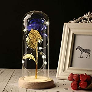 XWU Beauty and The Beast Enchanted 24K Gold Foil Artificial Blue Rose Flower in Glass Dome Cover with LED Light Wooden Base for Valentine's Day Wedding Birthday Gift 100