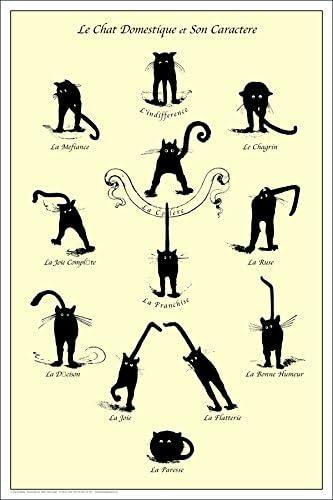 Domestic Cat and Character France Dorm Décor black Le Chat Domestique Poster