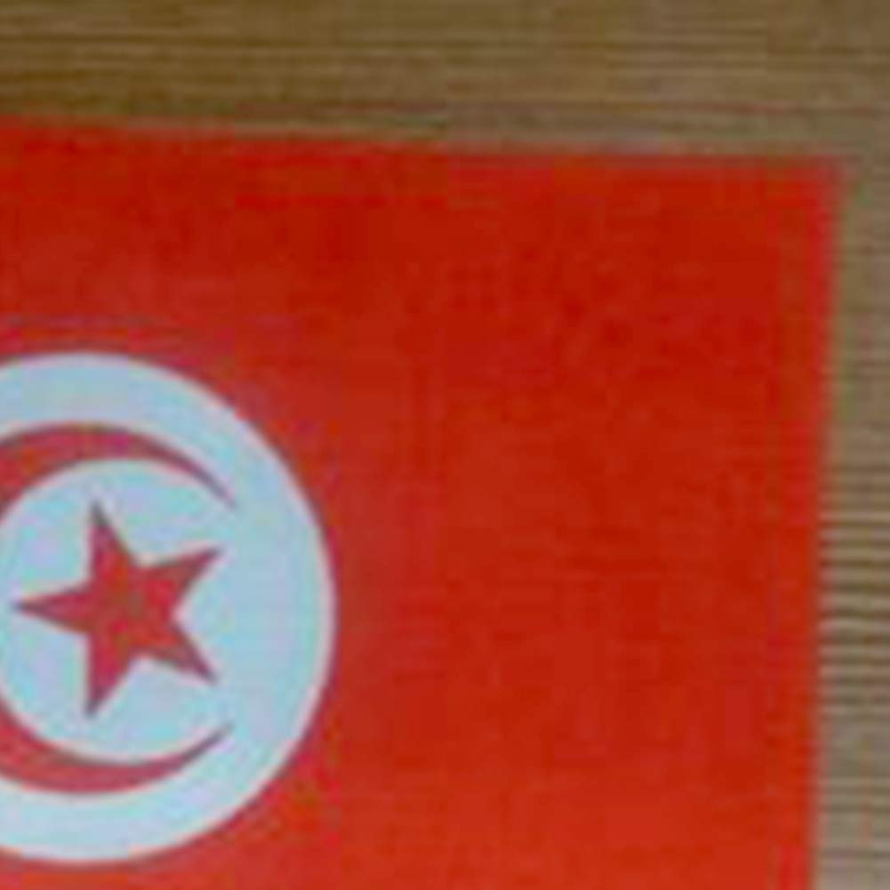 21cm D/écor de Bureau Bureau Jardin Parades C/él/ébrations du Festival DierCosy Tunisie B/âton Drapeau 10PCS//Paquet Tunisie Main ondulant des Drapeaux Held Mini Drapeau National /à la Main 14