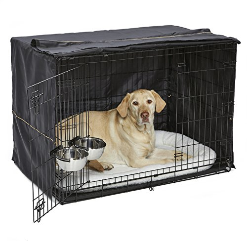 iCrate Dog Crate Starter Kit | 42-Inch Dog Crate Kit Ideal for LARGE DOG BREEDS Weighing 71 - 90 Pounds | Includes Dog Crate, Pet Bed, 2 Dog Bowls & Dog Crate Cover | 1-YEAR MIDWEST QUALITY GUARANTEE (Midwest Icrate Double Door Folding Dog Crate)