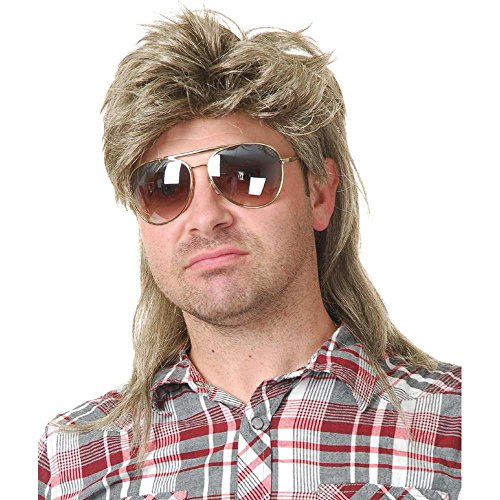 Charades Unisex-Adult's Joe Dirt Wig, Blonde, One Size -