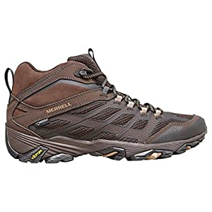 Merrell Men's Moab FST GTXÂ Walking Boot, Brown, US9.5