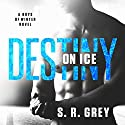 Destiny on Ice: Boys of Winter Book 1 Audiobook by S. R. Grey Narrated by Tracy Marks