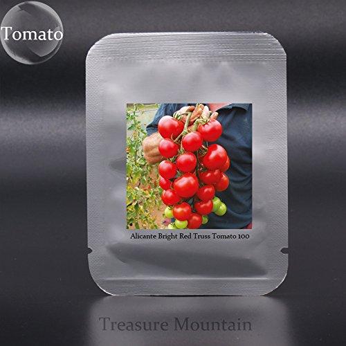 Rara de la herencia Alicante (Vishenka, dulces millones) Semillas Rojo Brillante Armadura Mini SM tomate, Professional Pack, 100 semillas / Paquete: ...
