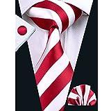 Hi-Tie Mens Classic Stripe Tie Set for Men Silk Woven