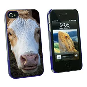 Graphics and More Brown and White Cow - Snap On Hard Protective Case for Apple iPhone 5 5s - Blue - Carrying Case - Non-Retail Packaging - Blue