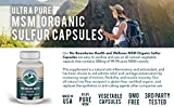 500mg MSM Organic Sulfur Capsules by No