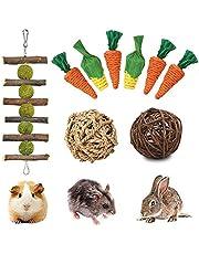 FINEVERNEK 9 konijnenspeelgoed, kleine dieren kauwspeelgoed, konijnen kauwspeelgoed, kauwspeelgoed, kauwen konijntje, natuurlijk grasbal, kauwen molar speelgoed voor hamsters racemuizen