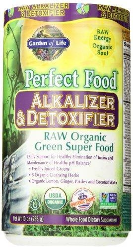 Garden of Life Parfait Food® RAW - alkalizer & Detoxifier poudre organique, poudre 285g