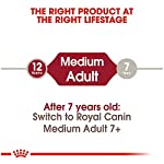 Royal Canin Size Health Nutrition Medium Adult Dry Dog Food 11