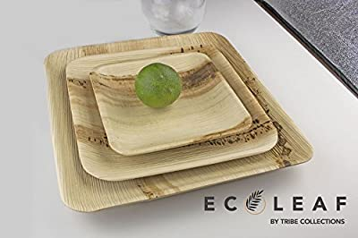 LeanOrb - All Natural Disposable Palm Leaf Dinner Party Plates - 100% Compostable