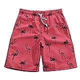 Coface Men's Summer Loose Quick-drying Beach Pants Shorts Swim Trunks Swim Shorts Bed with Black Flamingos