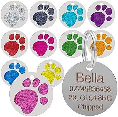 Placa para mascotas, con diseño de huella de pata, brillante, para gatos y perros, 25 mm: Amazon.es: Productos para mascotas